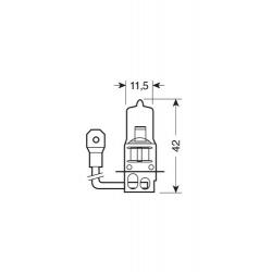 AMPOULE H3 12V55W PK22S - Accueil